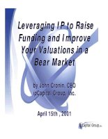 Leveraging IP to Raise Funding and Improve Your Valuations in a Bear Market_1 pptx