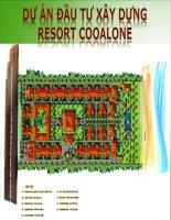 Phân tích chiến lược dự án đầu tư xây dựng resort cooalone