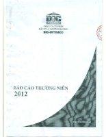 báo cáo thường niên năm 2012 công ty cổ phần đầu tư thương mại dic
