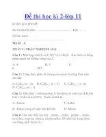 Đề thi học kì 2-lớp 11 pdf
