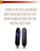 Phân tích chiến lược đưa sản phẩm điện thoại beat DJ của tập đoàn sam sung đến với thị trường việt nam