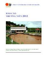 báo cáo thường niên 2012 công ty cổ phần đầu tư điện tây nguyên