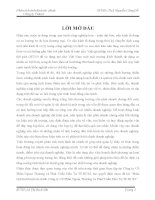 Phân Tích Tình Hình Tài Chính Công Ty Cổ Phần Ngoại Thương và Phát Triển Đầu Tư thành phố Hồ Chí Minh (Công Ty Cổ Phần FIDECO)