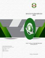 báo cáo thường niên năm 2012 công ty cp nhựa thiếu niên tiền phong