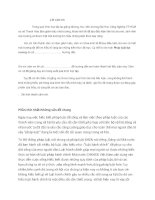 tiểu luận về luật hành chính của nước việt nam doc