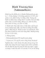 Bệnh Thương hàn (Salmonellosis) doc