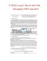 Đề và gợi ý đáp án môn văn tốt nghiệp THPT năm 2014 và đề, đáp án chấm điểm tất cả các môn thi tốt nghiệp năm 2014