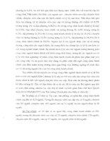 Báo cáo – Nghiên cứu quản lý nhân lực hành chính nhà nước part 6 pdf