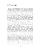 LUẬN VĂN VIỄN THÔNG ỨNG DỤNG CÁC PHẦN MỀM MÔ PHỎNG MẠCH ĐIỆN TỬ KHẢO SÁT BỘ ĐIỀU CHẾ MÁY PHÁT ADAR
