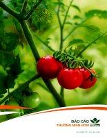 báo cáo thường niên nsc 2013 nsc công ty cổ phần giống cây trồng trung ương