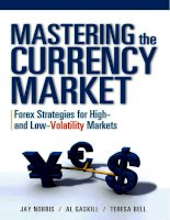 Mastering the Currency Market Forex Strategies for High and Low_1 docx