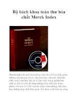 Bộ bách khoa toàn thư hóa chất Merck Index pptx