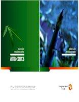 báo cáo thường niên 2013 công ty cổ phần tập đoàn đầu tư thăng long thang long invest group