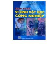 Giáo trình vi sinh vật học công nghiệp part 1 doc