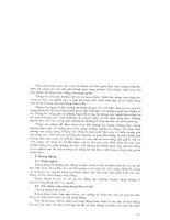 Giáo trình an toàn lao động chuyên nghành điện part 3 doc