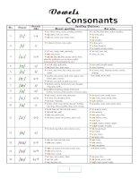 Vowels & Consonants pot