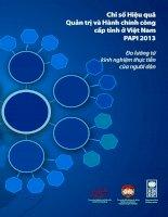 chỉ số hiệu quả quản trị và hành chính công cấp tỉnh ở việt nam papi 2013 đo lường từ kinh nghiệm thực tiễn của người dân