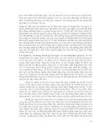 Báo cáo – Nghiên cứu quản lý nhân lực hành chính nhà nước part 5 pdf