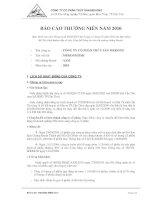 báo cáo thường niên năm 2010 công ty cổ phần thủy sản mekong tên viết tắt  mekongfish