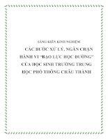 """Các bước xử lý, ngăn chặn hành vi """"Bạo lực học đường"""" của học sinh trường Trung học Phổ thông Châu Thành"""