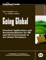 Practical Applications and Recommendations for HR and OD Professionals in the Global Workplace_1 docx