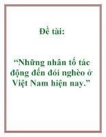 """Đề tài: """"Những nhân tố tác động đến đói nghèo ở Việt Nam hiện nay."""" pdf"""