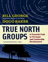 True North Groups A Powerful Path to Personal and Leadership Development BK Business_1 doc