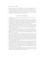 Triple Bottom Line Risk Management_3 doc