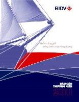 báo cáo thường niên 2011 phần 1 ngân hàng tmcp đầu tư và phát triển việt nam bidv