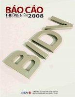 báo cáo thường niên 2008 phần 1 ngân hàng tmcp đầu tư và phát triển việt nam bidv