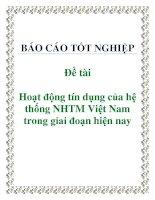 Đề tài: Hoạt động tín dụng của hệ thống NHTM Việt Nam trong giai đoạn hiện nay docx