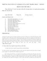 Thực tiễn và ý nghĩa phương pháp luận pdf