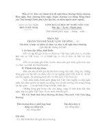 Mẫu số 12: Báo cáo thành tích đề nghị khen thưởng Huân chương Hữu nghị, Huy chương Hữu nghị, Huân chương Lao động, Bằng khen của Thủ tướng Chính phủ pdf