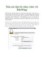 Xóa các tập tin nhạy cảm với FileWing pdf