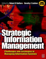 Strategic Information Management Third Edition Challenges and Strategies in Managing Information Systems_1 pdf