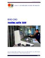 báo cáo thường niên 2011 công ty cổ phần đầu tư điện tây nguyên