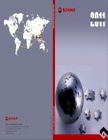 báo cáo thường niên 2011 công ty cổ phần quốc tế sơn hà
