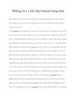 Những lưu ý khi đặt bonsai trong nhà pdf