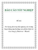 Đề tài: Sử dụng phương tiện quảng cáo trong hoạt động marketing sản phẩm điện tử của công ty Daewoo – Hanel. pot