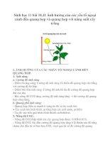 Sinh học 11 bài 10,11 Ảnh hưởng của các yếu tố ngoại cảnh đển quang hợp và quang hợp với năng suất cây trồng ppt