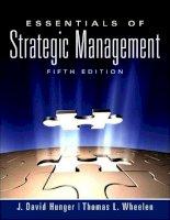 Essentials of Strategic Management 5th Edition_1 ppt