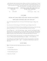 MẪU GIẤY PHÉP THÀNH LẬP VÀ HOẠT ĐỘNG NGÂN HÀNG THƯƠNG MẠI CỔ PHẦN THỐNG ĐỐC NGÂN HÀNG NHÀ NƯỚC VIỆT NAM pdf
