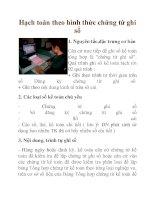 Hạch toán theo hình thức chứng từ ghi sổ docx