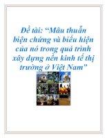 """Đề tài: """"Mâu thuẫn biện chứng và biểu hiện của nó trong quá trình xây dựng nền kinh tế thị trường ở Việt Nam"""" ppt"""