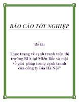 """Đề tài: Thực trạng về cạnh tranh trên thị trường BIA tại Miền Bắc và một số giải pháp trong cạnh tranh của công ty Bia Hà Nội"""". doc"""