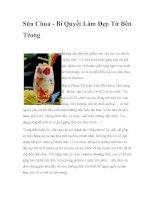 Sữa Chua - Bí Quyết Làm Đẹp Từ Bên Trong doc