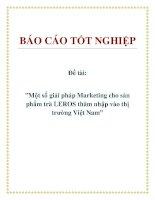"""Đề tài:""""Một số giải pháp Marketing cho sản phẩm trà LEROS thâm nhập vào thị trường Việt Nam"""". potx"""