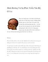 Dinh Dưỡng Và Sự Phát Triển Não Bộ Ở Trẻ docx