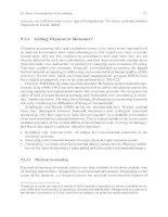 Quantitative Economics How sustainable are our economies by Peter Bartelmus_8 potx