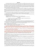 tiểu luận thực trạng cổ phần hóa doanh nghiệp nhà nước ở việt nam
